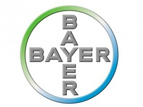 Bayer / DKM Experts